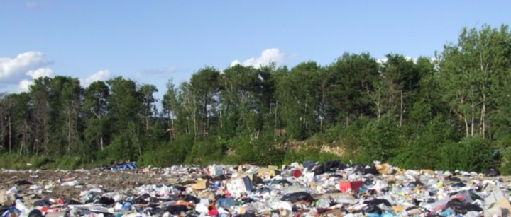 Going Waste Free – is it really that difficult?